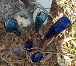 Blue Glass tree saplings
